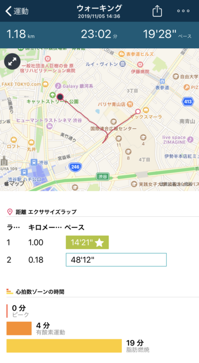 フィットビット ヴァーサ2 スペシャルエディション